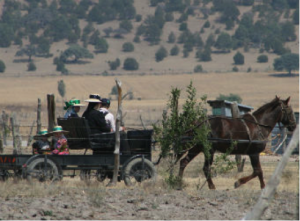 How to remain separate from the world is an ongoing question for many Mennonite groups, not just those in Latin America.